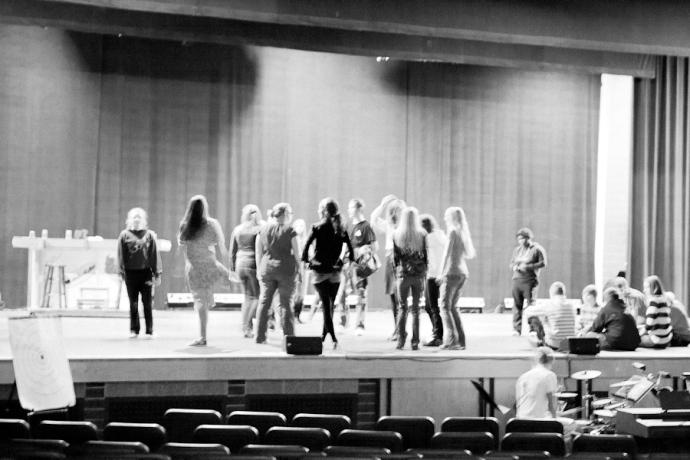 Allendale High School, Spring Musical, Bye Bye Birdie